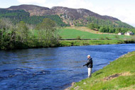 river conon salmon fishing, ross-shire, highlands, coul fishings