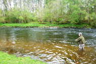 river oich salmon fishing, highlands