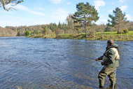 guided salmon fishing, river ness