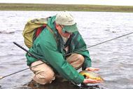 guided trout in caithness